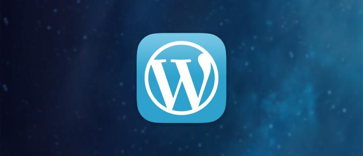 Best Plugins For Professional Word Press Websites